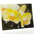 40510 Часы 30х40 стекло Желтая орхидея